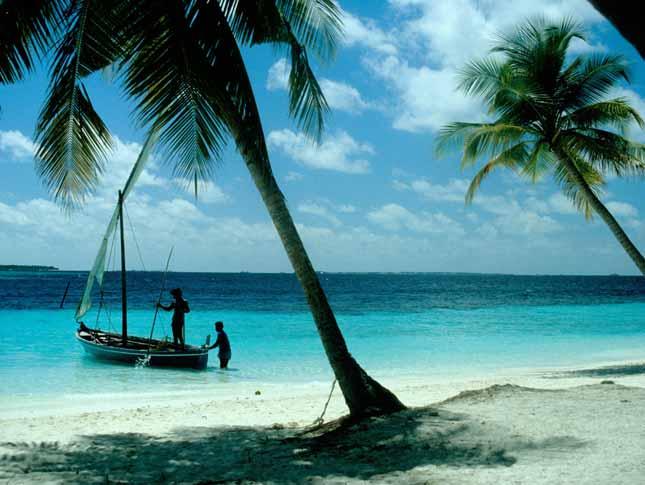 maldiv1.jpg