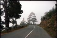 Кипр. Тродос. Дорога. Туман.