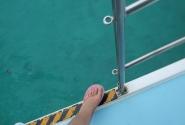 яхта Курумба