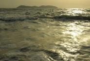 Морская ртуть (с) Леша Камчатский