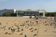 Какая ж главная площадь страны без них, без голубей!