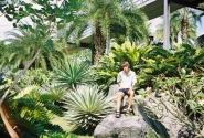 Аллея кактусов