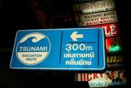 Такие знаки сейчас висят на всем острове через каждые 100 метров, показывая места укрытия в случае цунами