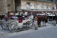 Фиакры - неотъемлемая часть площади у Св.Стефана. Своим названием фиакры обязаны церкви Св. Фиакра в Париже, месту стоянки наемных экипажей. Кстати, Вена - один из немногих городов мира, где лошадь до сих пор является равноправным участником движения.