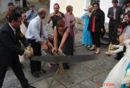 свадебные дровопилы
