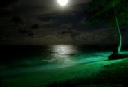 первая ночь на пляже