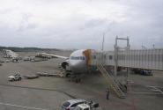 В аэропорту Нарита