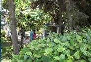 Агадир. мини-зоопарк