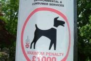 Убери за собакой, иначе штраф!