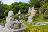 такие вот камни растут в этом парке