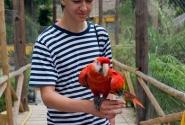в Лемурятнике попугаи смелее чем я думал...