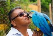 у местного дядьки с попугаем игра в поцелуйчики....