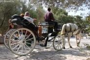 После посещения Акрополя