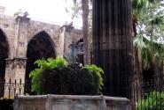 внутрениий дворик Кафедрального собора