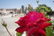 Хива - роза, посреди пустыни..