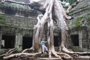 Змей-дерево