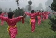 Девушки - кунфуистки