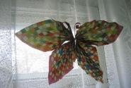 бабочка из сканворда в военном госпитале