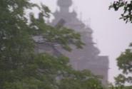 дождик хлынул