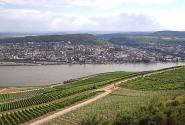 Рейн. Панорама_1. Вид с 200 м холма
