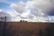 Приятно проехаться в автомобиле с таким видом из окна: Стоунхендж