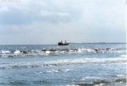 если приглядеться к морю во время шторма, можно и пиратскую шхуну заметить