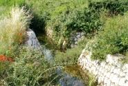Каналы в виноградниках