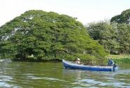 Близ Гранады на озере рассеяно более 300 островов.