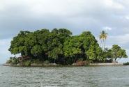 Сейчас фортов на островах не строят; предпочитают строить дачи.