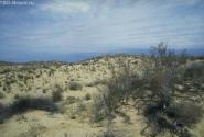 степной пейзаж