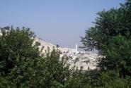 Сквозь годы и века здесь бродили булкаговские Иешуа и пятый прокуратор Иудеи всадник Понтий Пилат...