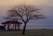 Вечерняя стоянка