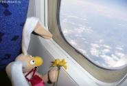 Для Вовчика Греция началась с самолета...
