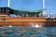 корабик 2