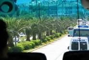 вид из окна автобуса