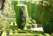 Сад при дворце