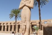 Рамзес II,  у него было 200 детей и 50 жён в памяти отложился)