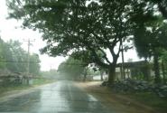 Тропические ливни нас сопровождали частенько