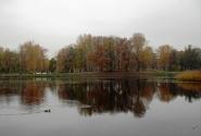 9 Таврический пруд