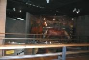 Мостик к сувенирному магазину. Лошади за мостиком - висят в воздухе.