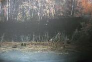 А здесь чуть-чуть видна лодка, выплывающая справа из-под ярких сенних ветвей