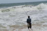 рыбак береговой