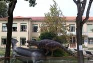 Музей динозавров. Деткам на радость...