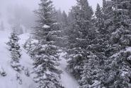 Погода на склонах не баловала...
