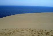 Один из видов с дюны Эфа.