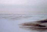 Залив во льдах.