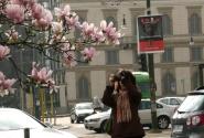 Миланская весна