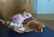 Покатаемся на черепахе...