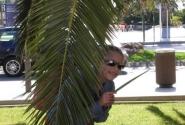 Поиграем в прятки с пальмами. Салоу