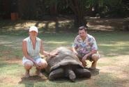 Сухопутная черепаха Haller Park (ей больше 100 лет)